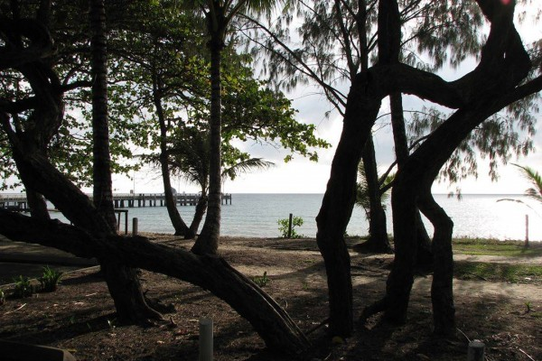 Palm Cove, Cairns Northern Beaches  Far South Coast Camper Hire Where do you want to go?  @farsouthcoastcamperhire #campertrailertouring #touringholiday  #farsouthcoast #farsouthcoastnsw #camper  #camping #caravan #caravaning #camping #campertrailer #farsouthcoastcamperhire #campertrailers #campertraileraustralia #campertrailerlife #cairns